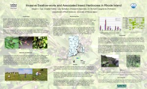 Invasive_Swallow-worts and associated insect herbivores