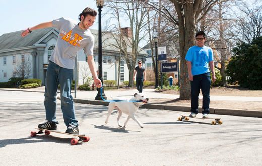 students on skateboards with a dog
