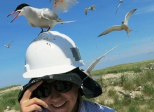 CELS students gain field experience through Coastal Fellows Program