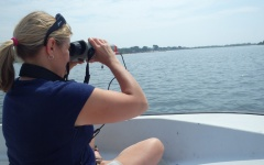 CELS researchers to examine Rhode Island's tolerance for aquaculture