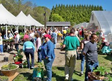 URI to host 14th annual East Farm Spring Festival, May 9