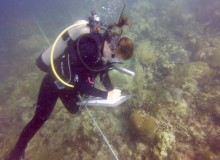 CELS student dives into fish research