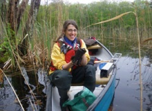 URI scientist: Beavers remove nitrogen from rivers
