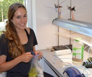CELS student investigates algae blooms at Westerly lagoon as summer research fellow