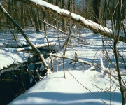 Extreme winter likely to affect water quality in Rhode Island