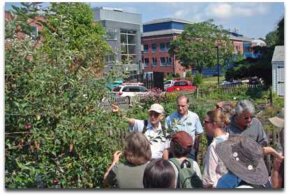 Outdoor class covers common plant problems
