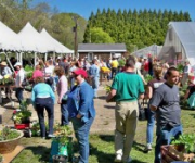16th annual Spring Festival on May 6th at new location