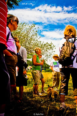 Coastal Institute Senior Fellows visit Windmist Farm. Photo credit: Ayla Fox