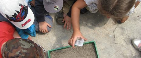 Environmental education programs  engaging children in several hands-on learning stations to explore biomes and plants and wildlife that inhabit southern New England.