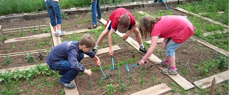 """Harnesses children's enthusiasm for the natural world, foster environmental awareness, ecological literacy and wellness, and bolster students' understanding of nutrition and food access through outdoor engagement and applied learning in a """"living laboratory"""" – the school garden."""