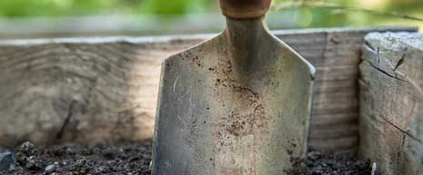 The URI Master Gardeners conducts soil testings to help determine your soil pH levels and textures, and will also provide recommendations for gradual correction of your soil problems.