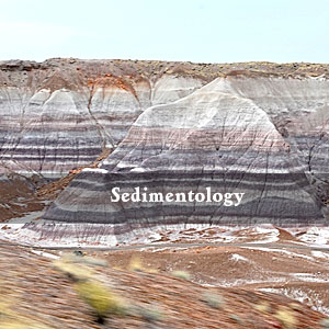 Quaternary and Modern Depositional Environments