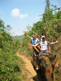 students riding an elephant in Thailand