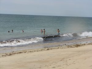 Swimmers at the beach.