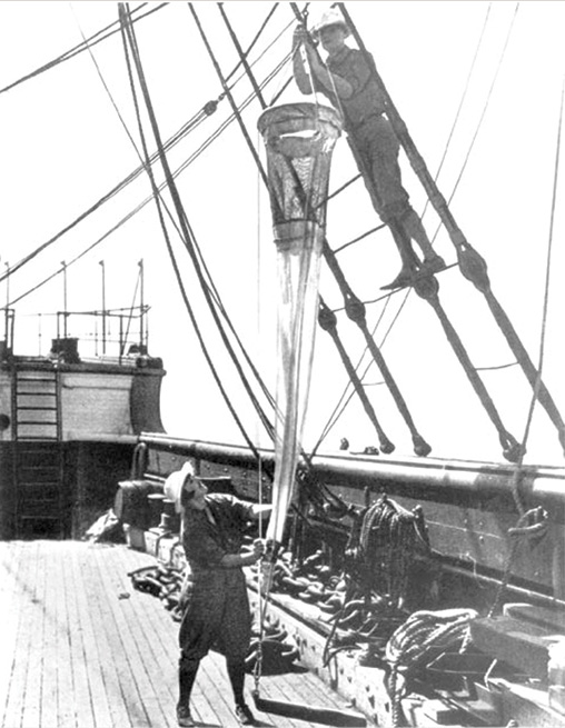 Charles and Marie Fish, namesakes of the Annual Fish Lectures, are pictured aboard the Arcturus during a deep sea oceanographic expedition, 1925. Courtesy of Pell Marine Library.