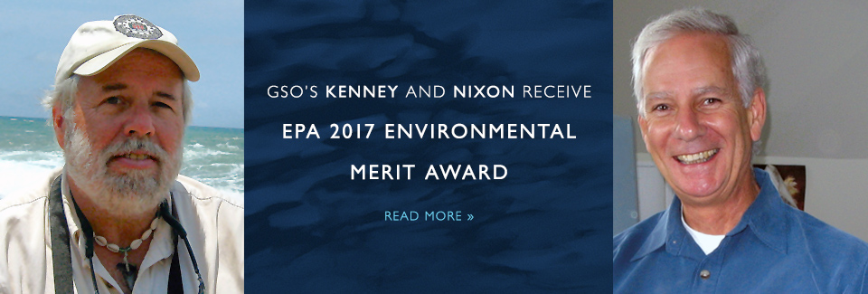 GSO's Kenney and Nixon Receive EPA 2017 Environmental Merit Award