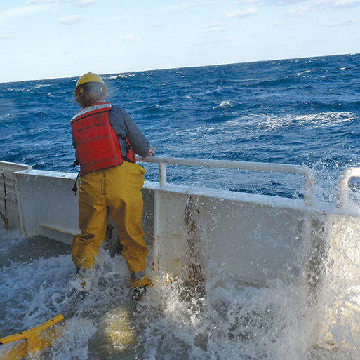 Professional Masters Degree In Oceanography (MO) Program