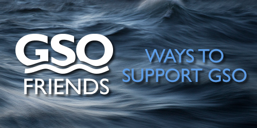 ways to support gso