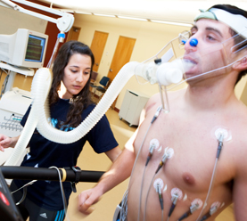 Kinesiology And Exercise Science dgree courses