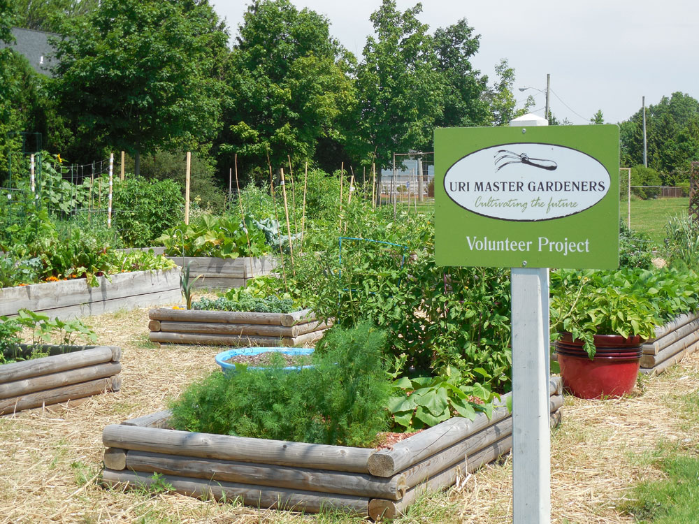 Middletown Library Community Garden