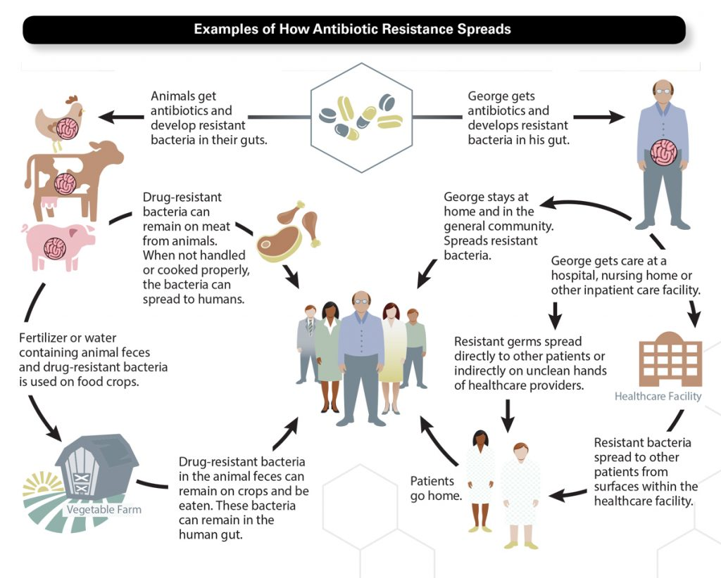 CDC Examples of how antibiotic resistance spreads