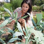 Sejal Lanterman '05 at the URI Cooperative Extension Gardens.