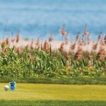Thank-you-golf-pix