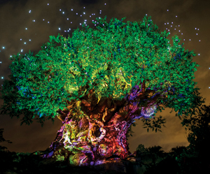 The Tree of Life lights up at night.