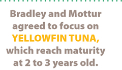 Pullquote: Bradley and Mottur agreed to focus on yellowfin tuna, which reach maturity at 2 to 3 years old.