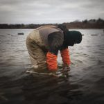 Matunuck Oyster Farm employees working Potter's Pond.