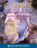 The Current Winter/Spring 2013 issue