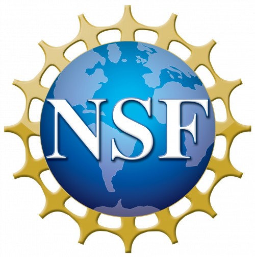 nsf-plain-blue