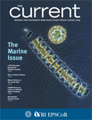 The Current Spring 2009 issue