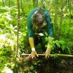 URI students assess effects of beaver ponds on the environment