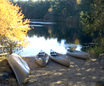 canoes at the pond