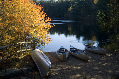 canoes lines up on the shore